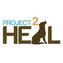 CHSI Sponsors Project 2 Heal 5K