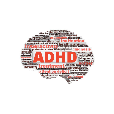 picture of brain - adhd
